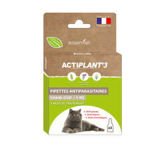 Actiplant'3 pipettes grand chat