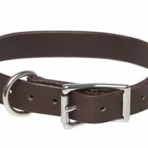 Collier cuir simple pour chien couleur CHOCOLAT